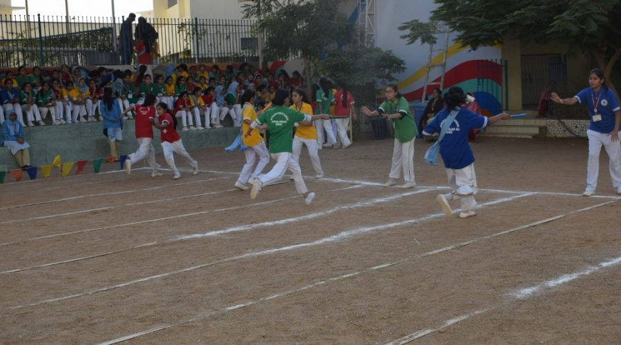 DPS_Annual_Sports_Festival_2018 (16)