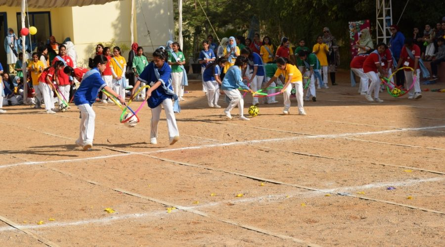 DPS_Annual_Sports_Festival_2018 (4)